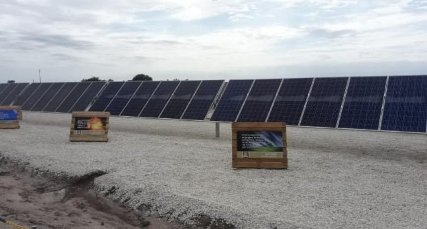 CAVANAGH: INAUGURARON PLANTA DE ENERGÍA SOLAR