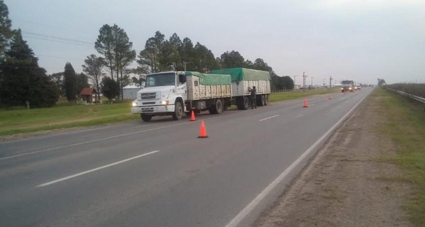 EXCESO DE PESO EN TRANSPORTE DE CARGA