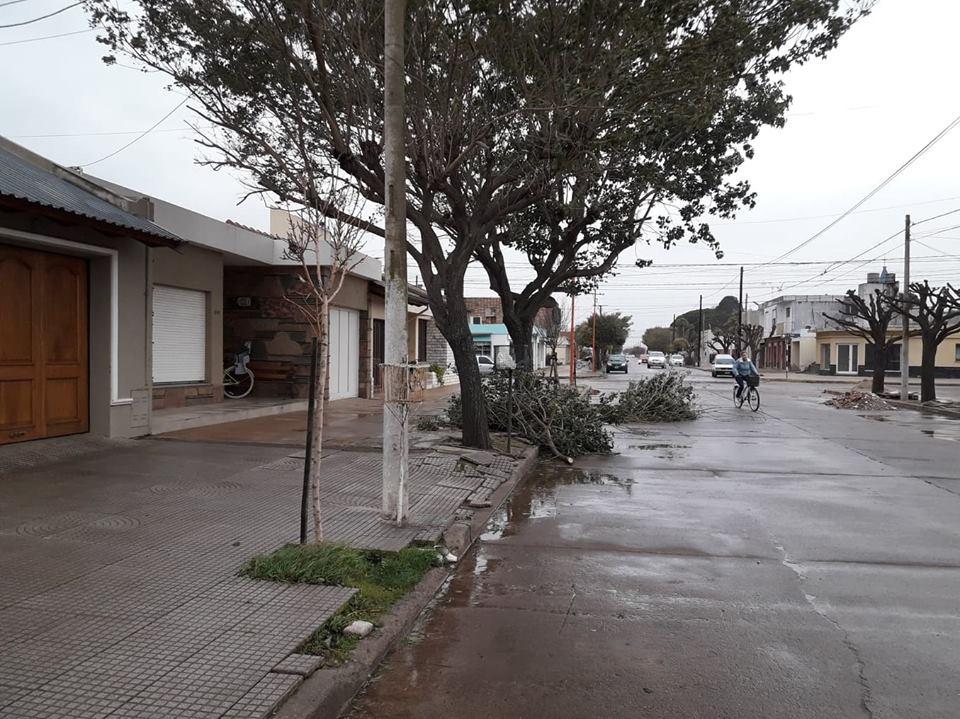 FUERTE TEMPORAL DE VIENTO Y TIERRA EN LA REGIÓN